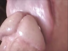 image Blowjob with my 0g prince albert piercing